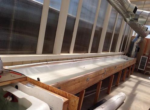 Aquaponics trough ! resized 600