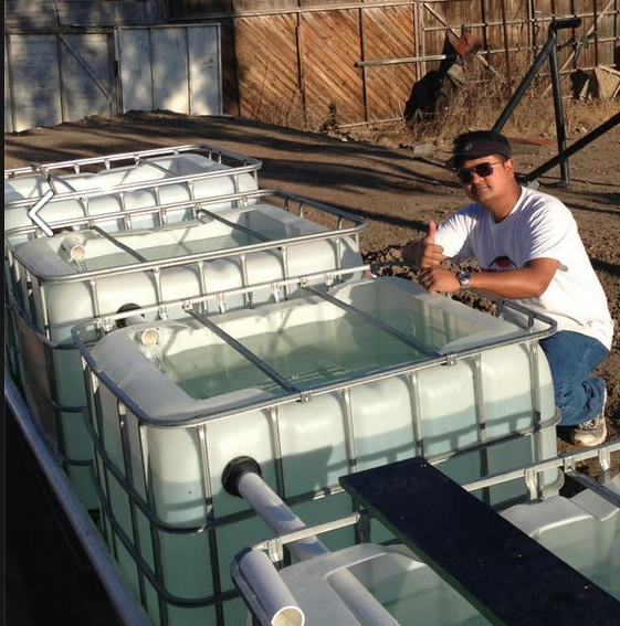 Aquaponics in Mexico
