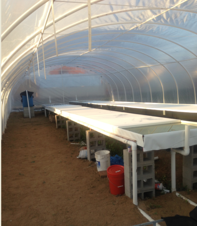 Aquaponics mex clean floors resized 600