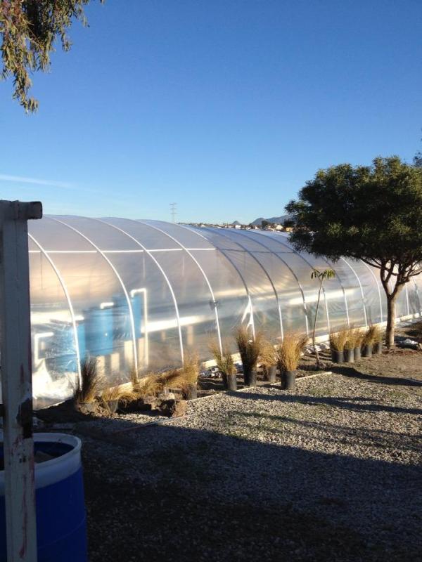 aquaponics mex greenhouse complete resized 600