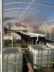 Aquaponics interior Mexico resized 600