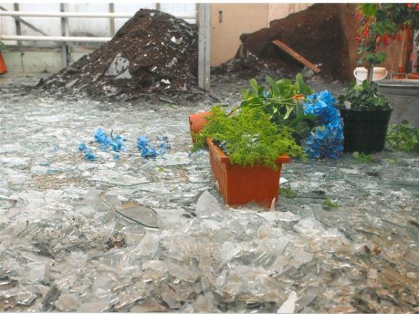 Greenhouse broken glass