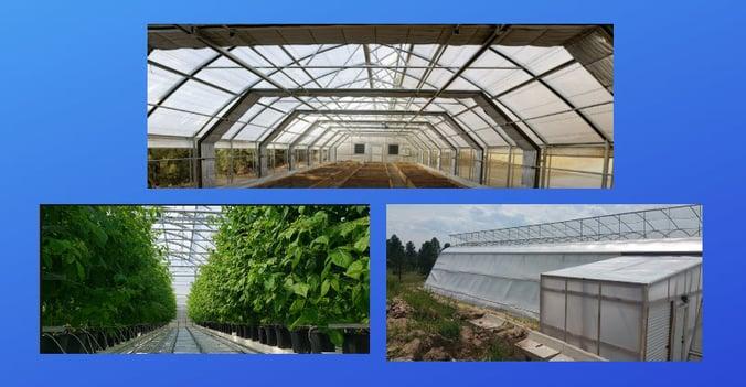 Greenhouse film with 10 yr warranty