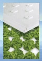Lettuce boards lettuce rafts