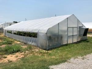 Oklahoma greenhouse 2