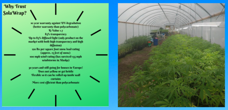 Have you tried SolaWrap for growing hemp?