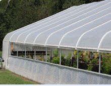 SolaWrap Green House plastic