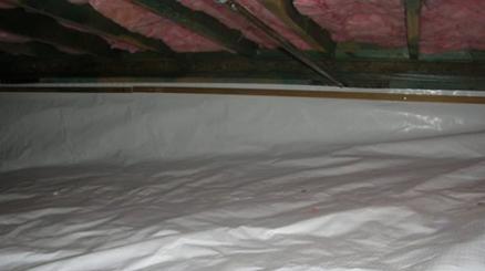 20 Mil Plastic Sheeting White String Reinforced