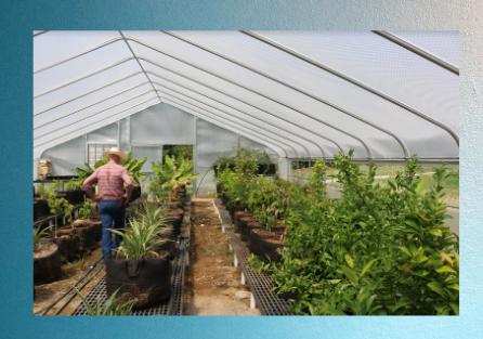 SolaWrap Greenhouse Covering Bulk Rolls 760 597 9298
