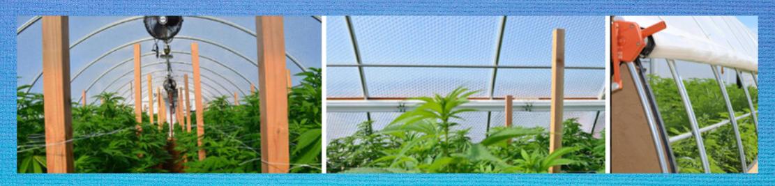 Cannabis greenhouse SolaWrap